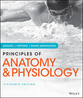 Test Bank for Principles of Anatomy and Physiology, 15th Edition by Gerard J. Tortora Test Bank 1